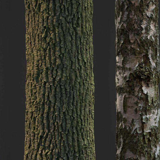 Pack de texturas de corteza de arboles escaneadas – David Chumilla Liccioli