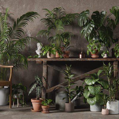 3DC_Plantas_interior_Banner_Web